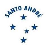 Distintivo Santo André