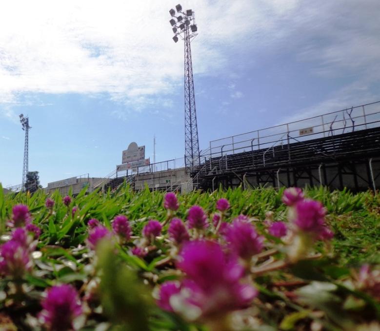Estádio Municipal dos Amaros - Oeste de Itápolis