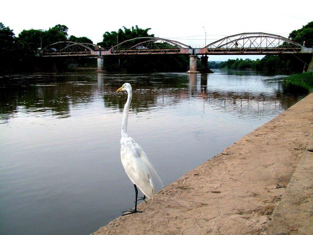 Rio Mogi-Guaçu Porto Ferreira