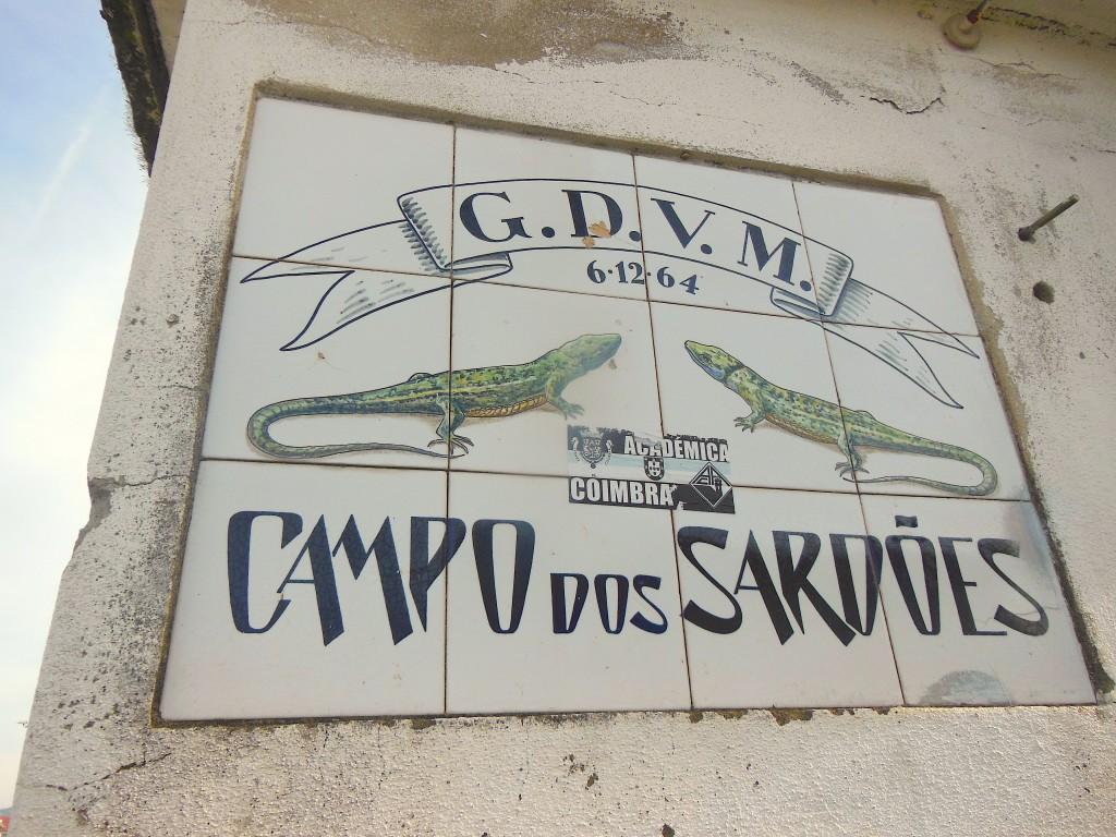 Campo dos Sardões- Grupo Desportivo O Vigor da Mocidade