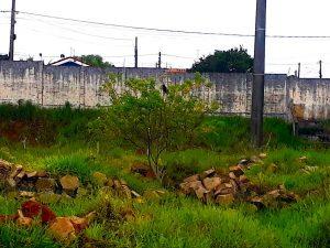 Estádio Municipal Edivaldo Rodrigues de Arruda - Paranapanema