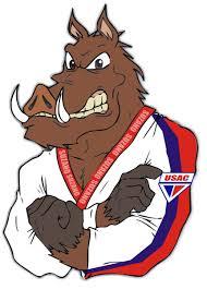 Mascote USAC